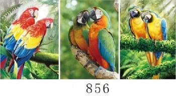 Buatan Tangan Lenticular Indah Berbicara Burung Beo Sandal 3d Poster