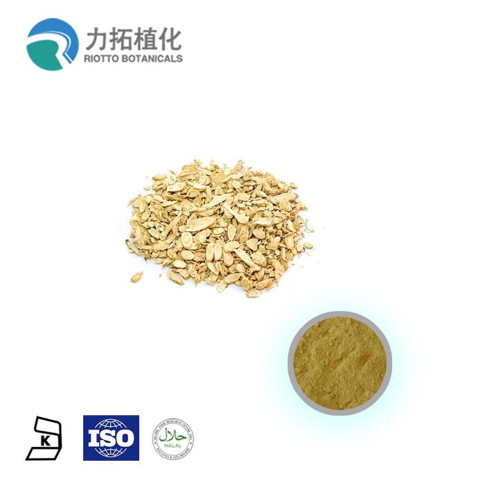 Venta caliente de alta calidad Extracto de Ginseng americano
