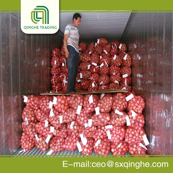 50mm size top quality red onion with market price