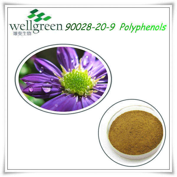 Pharmaceutica raw material herb extract cas 70831-56-0 echinacea powder