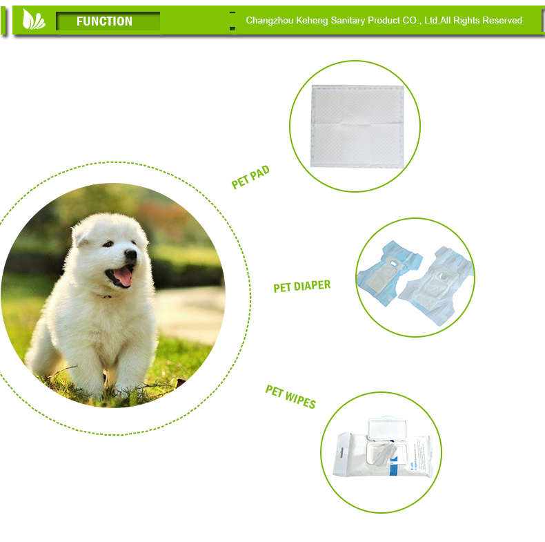 New products discount pet shop diapers