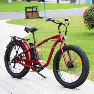 2018 hot sale lithium battery 500w / 750w fat tire adult mountain electric bicycle RSD505