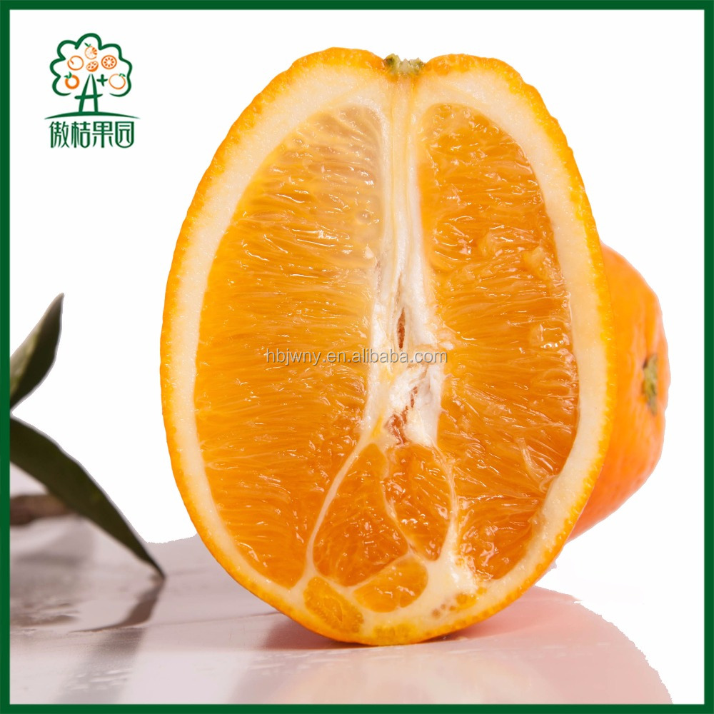 Fresh navel orange producers