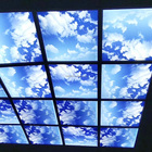 lexan Solid Polycarbonate Sheet of Skylight Roofing