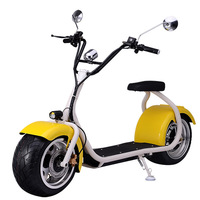 The most fashionable city coco 2 wheel electric scooter for adult electric motorcycle