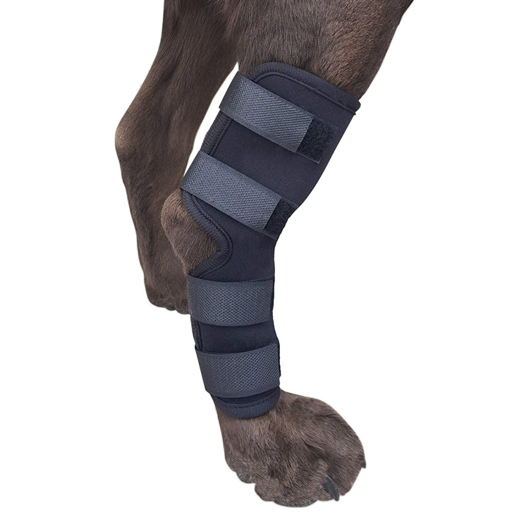 Dog Leg Braces Elbow Protector Dog Recovery Elbow Compression Sleeve