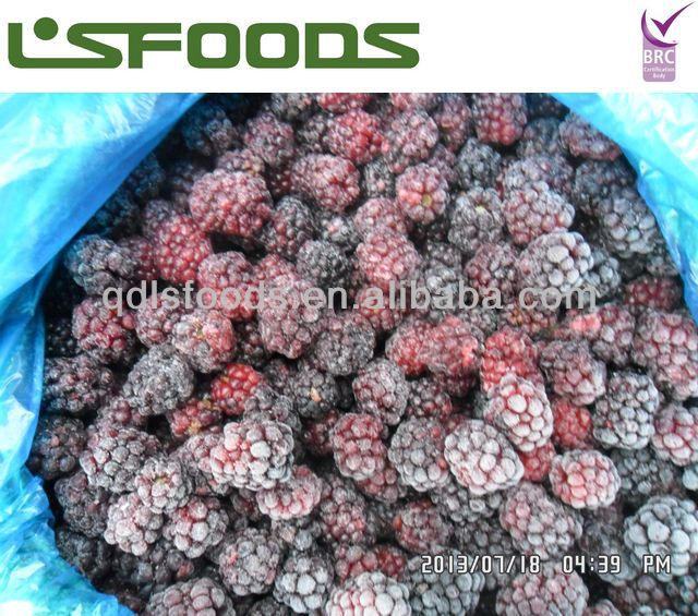 IQF frozen blackberry low price
