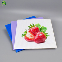 Hot new products twinwall plastic sheets With Cheap Prices