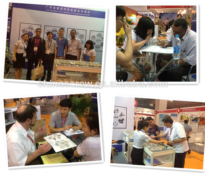 China Screw Factory Galvanized Small Micro Eyeglass Hinge Screws ...