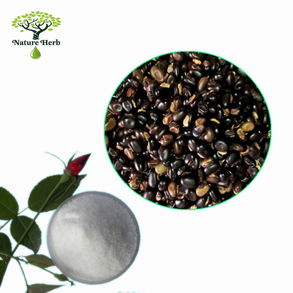 Bulk herbs wholesale - Nature Herb Provide Organic L Dopa 98 Cas 59 92 7 In