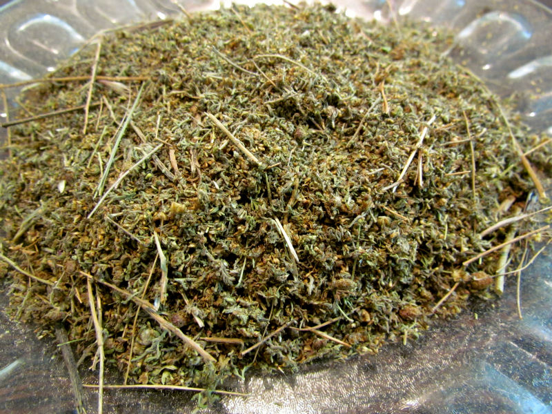 Dried Wormwood
