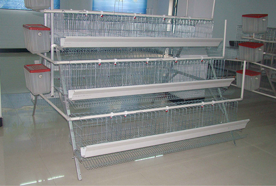 South africa best sale chicken cage/ chicken broiler cages