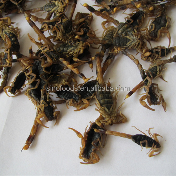 Quan Xie Good Service Competitive Price Dried Scorpion