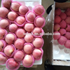 138-198 fresh apple fruit bulk red star apple on sale