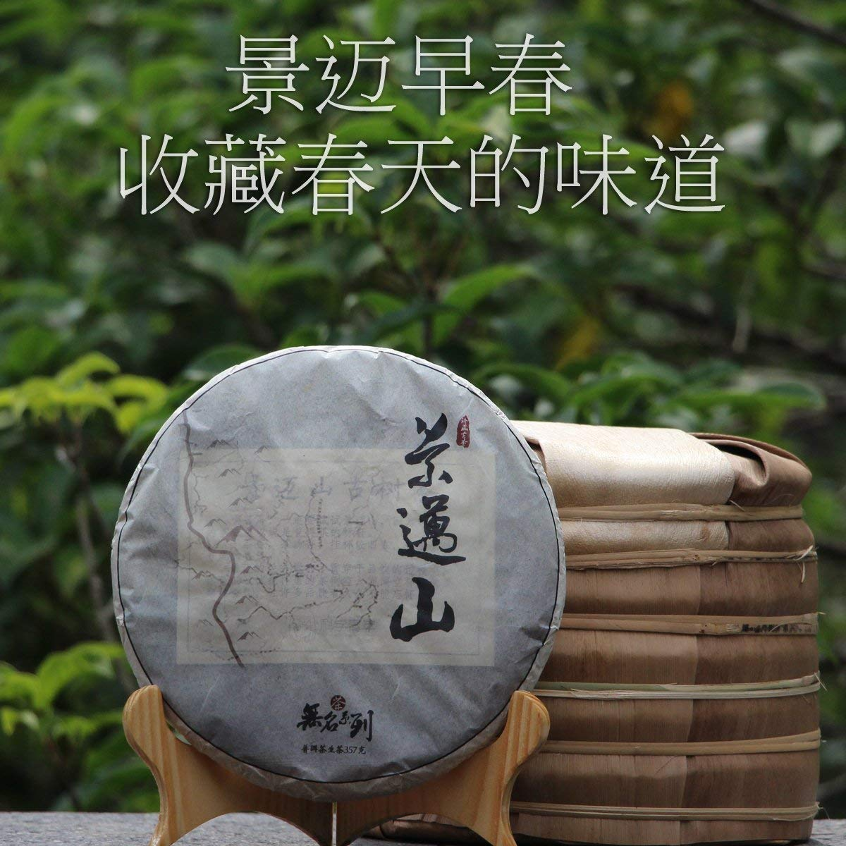 CHIY-GBC Ltd Chinese tasty snack, tea ceremony [1] in 2016 to buy 7 to send Jing maishan Pu'er Tea EXOBASIDIUM Pu'er Tea Youth Science Students