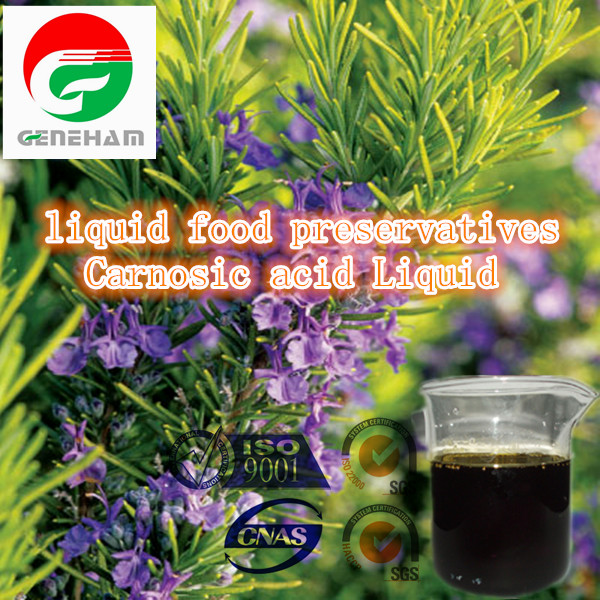 Fish oil and meat antioxidant - Rosemary extract carnosic acid powder5%-60% Factory China