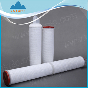 Out Support Polypropylene(pp) Mesh Net Ink Filter with Pleated Polypropylene(pp) Membrane for prefiltration/Glass Fiber Filter