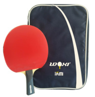 Wholesale Factory Price Table Tennis Racket Professional PingPong Paddle Set