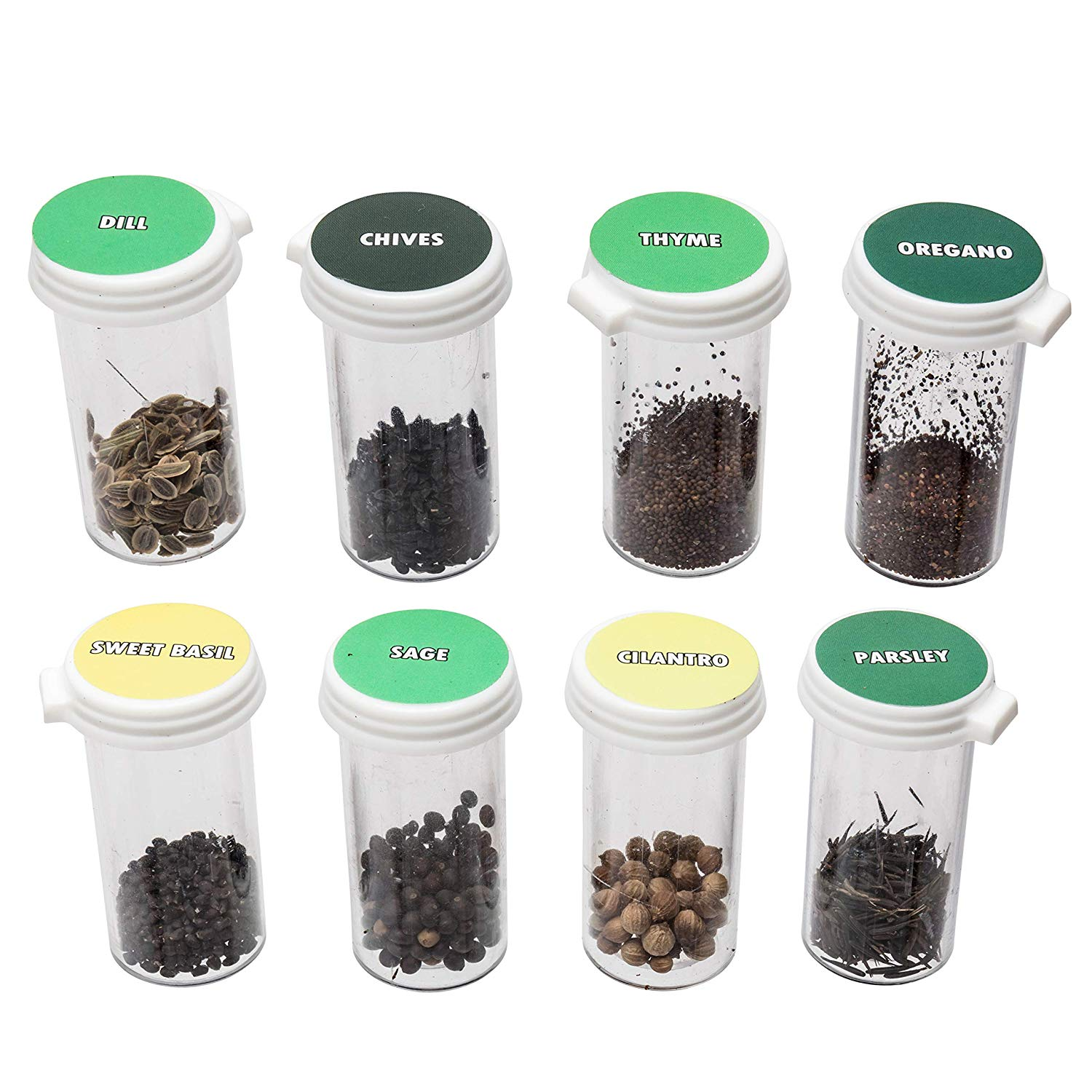 8 Premium Culinary Herb Garden Seed Kit | Grow Fresh Organic Herbs & Spices at Home | Stay Fresh Vials with More Seeds Than Traditional Seed Packets | Basil, Rosemary, Thyme & More