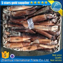 frozen squid tube squid liver powder argentinus illex squid !China suqid suppliers