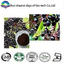 ISO Factory Supply Natural 100% Natural Elder Flowers Extract Powder