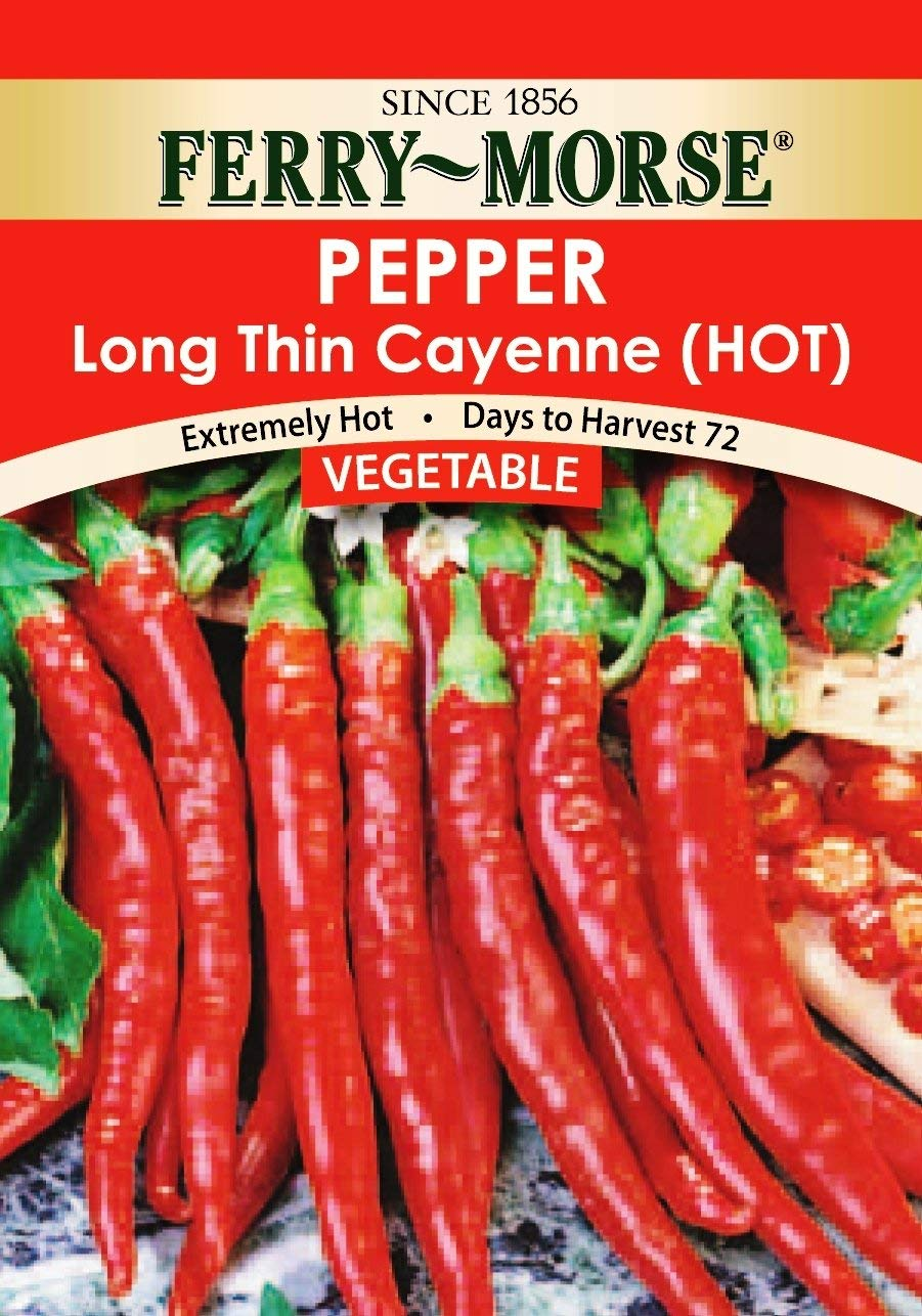 Get Quotations Ferry Morse Long Thin Cayenne Pepper Seeds