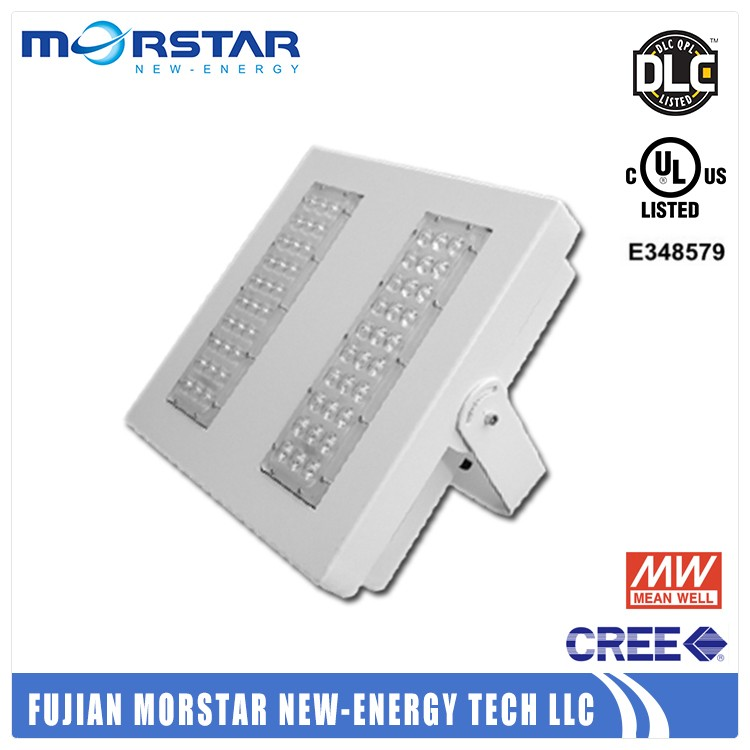 Steel gasketed enclosure led canopy lights with ETL listed