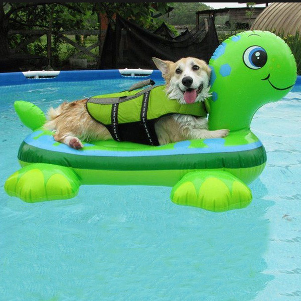 Customized Style Pvc Summer Swimming Pool Inflatable Dog