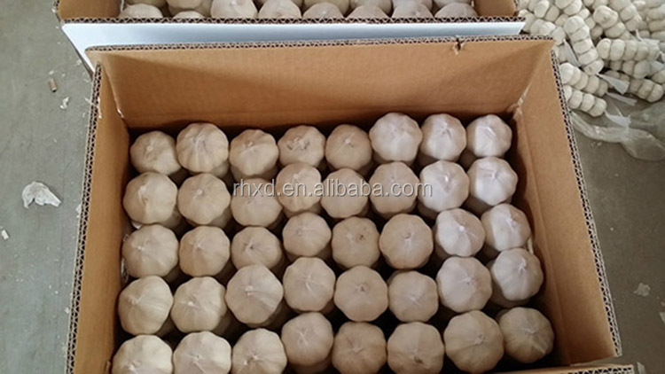 2018 Crop China Garlic Price Per Ton 1 Kg Garlic Price Oman 1000 Grams  Garlic - Buy Garlic Price In China,China Black Garlic,Chinese Garlic  Product on