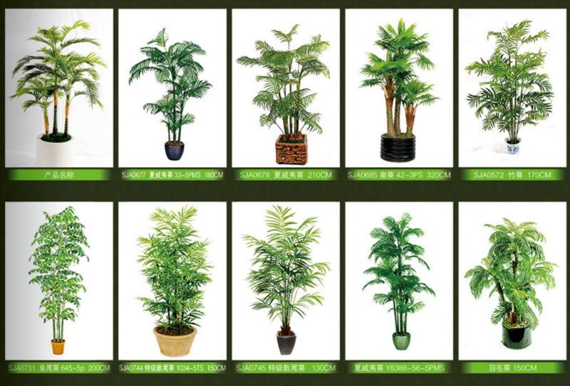 Yucca artificial cactus bonsai planta indoor grande de Plantas de interior duras