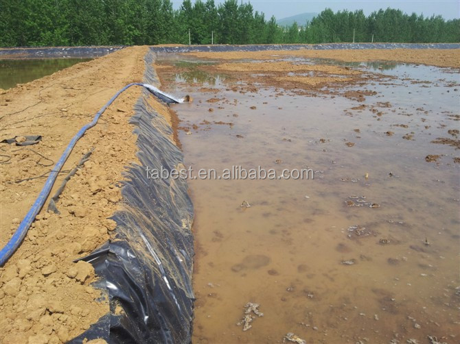 Gardens engineering hdpe material pond liner buy gardens for Pond liner material