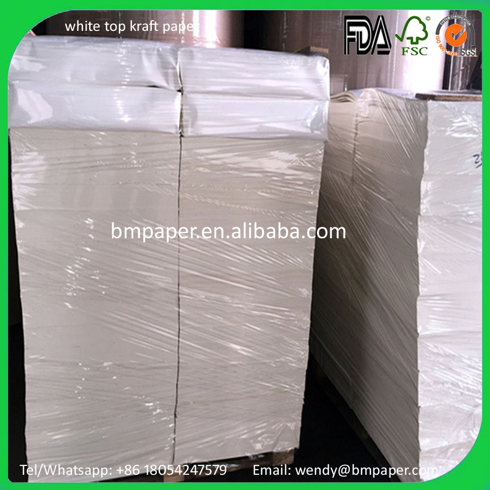 Top Quality White Bleached Kraft/Craft Paper Roll for Sale