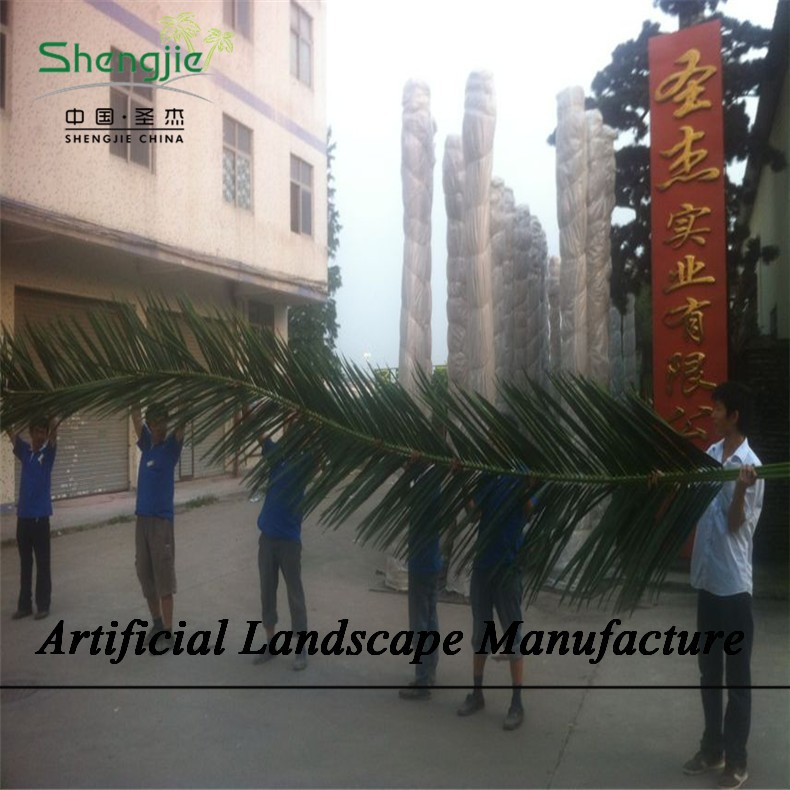 SJZJN 1413 Amazing almost 9 Meter Palm Leaves/High Quality palm Leaves