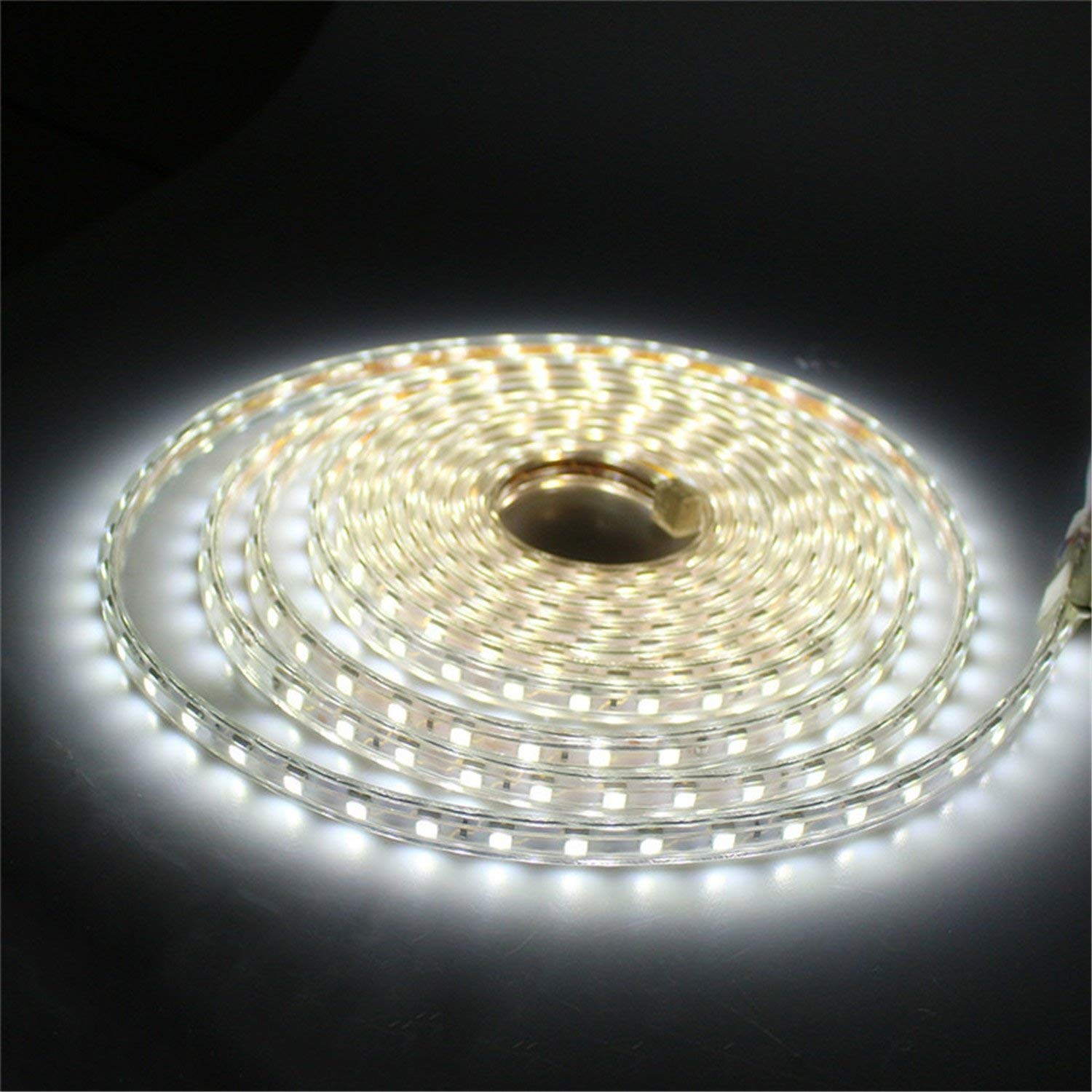 CL EU Plug 5M 2835SMD AC 220-240V 600LED LED Neon Rope light 2 Wires LED Neon Flex White DIP Led neon Ribbon (Color : Cool White)