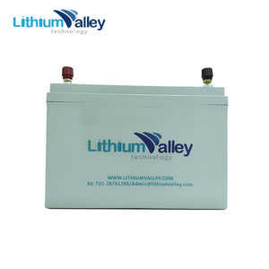 Best Price 12V 65Ah LiFePO4 Battery for Solar energy and Eletric Tools Use