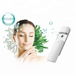 New products USB Rechargeable Beauty Personal tools portable Facial Nano Spray mist