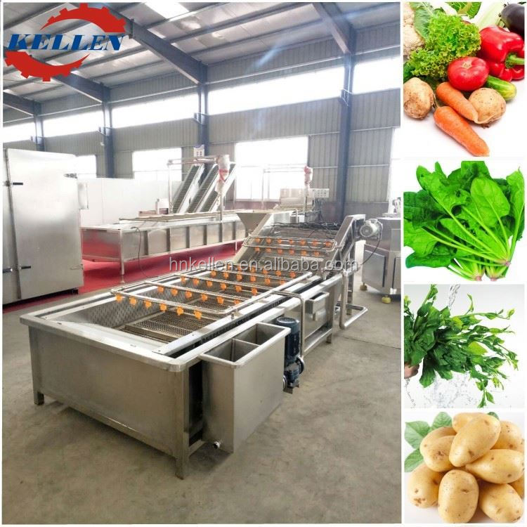 Fashional appearance commercial stable quality wash vegetable machine/plant/equipment