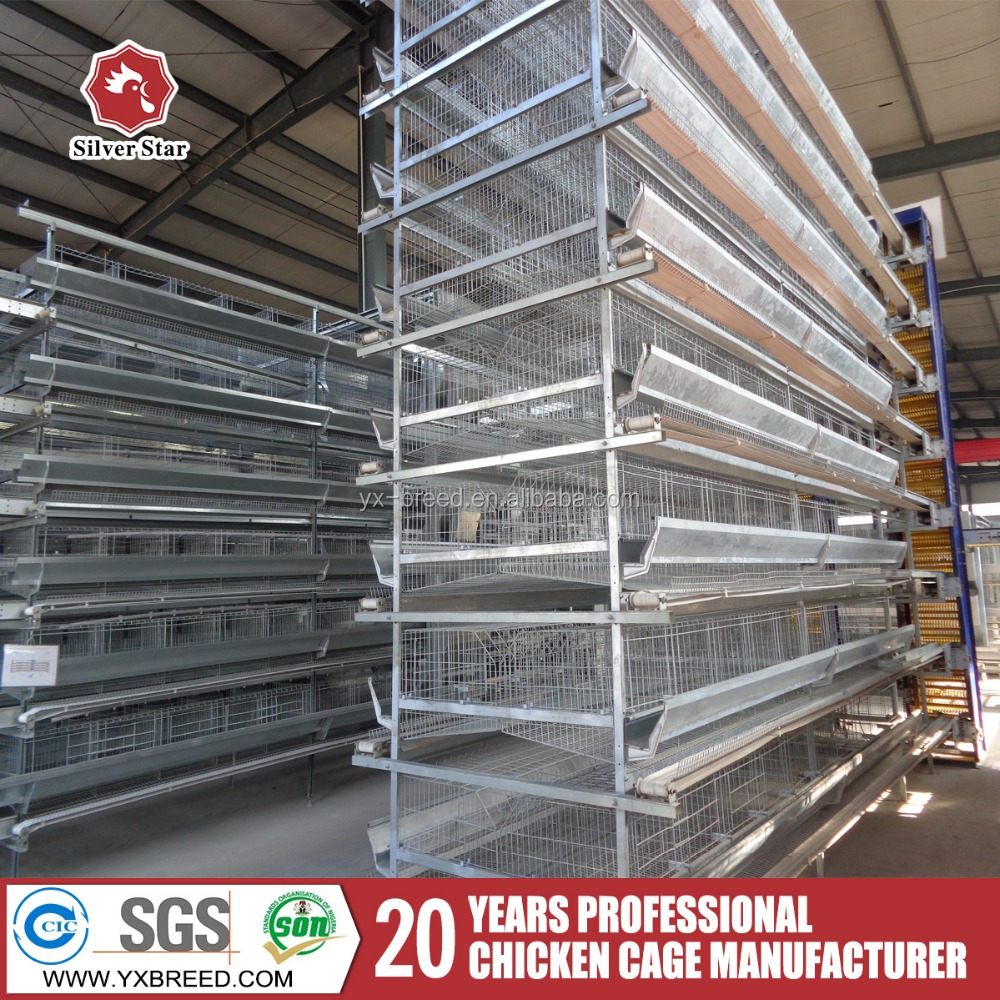 Layout Layer Poultry Farm Designed For Breeding Birds 10,000 Plan - Buy  Layer Poultry Farm,Broiler Poultry Farm,Poultry Farm Equipment Product on