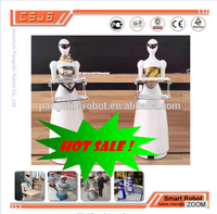 Top 2016 hot selling humanoid robot reasonable price