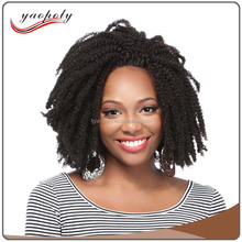 Short 180% Density Afro Kinky Curly Lace Human Hair Wigs Fall Lace Front Wig For Black Women