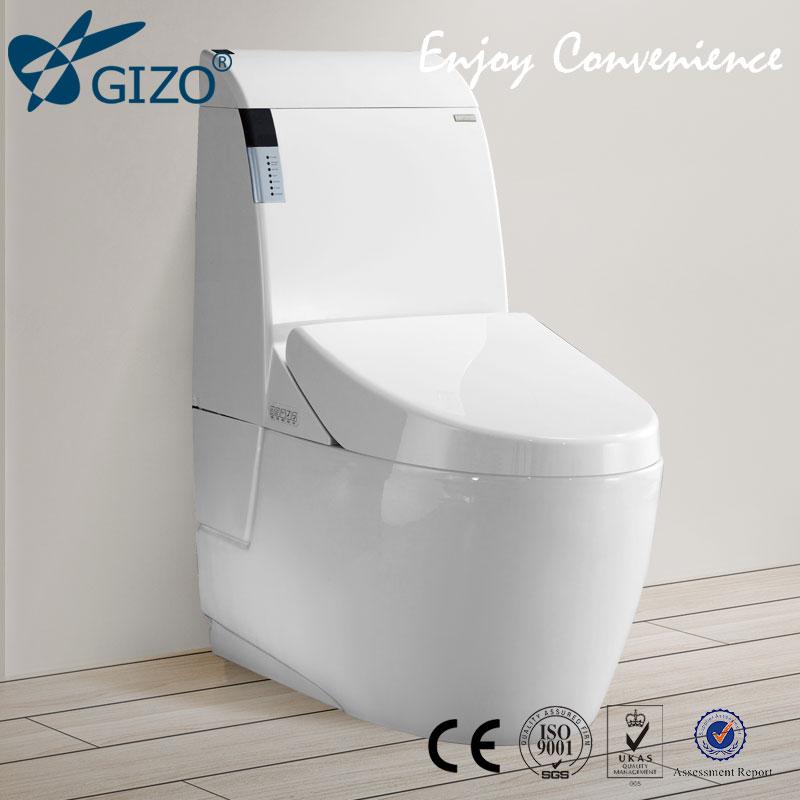 Bathroom Design Video bathroom design toilet bowl hidden toilet video smart toilet