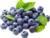High Quality  natural 25% Anthocyanidins Bilberry Extract