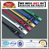 AISI304 Color Stainless Steel Ratcheting Cable Ties/Packing Strapping Band