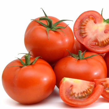 bright red tomato seeds israel bonbon vegetable seeds
