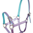 Horse Halter Personalized Adjustable PVC Horse Halter For Horse