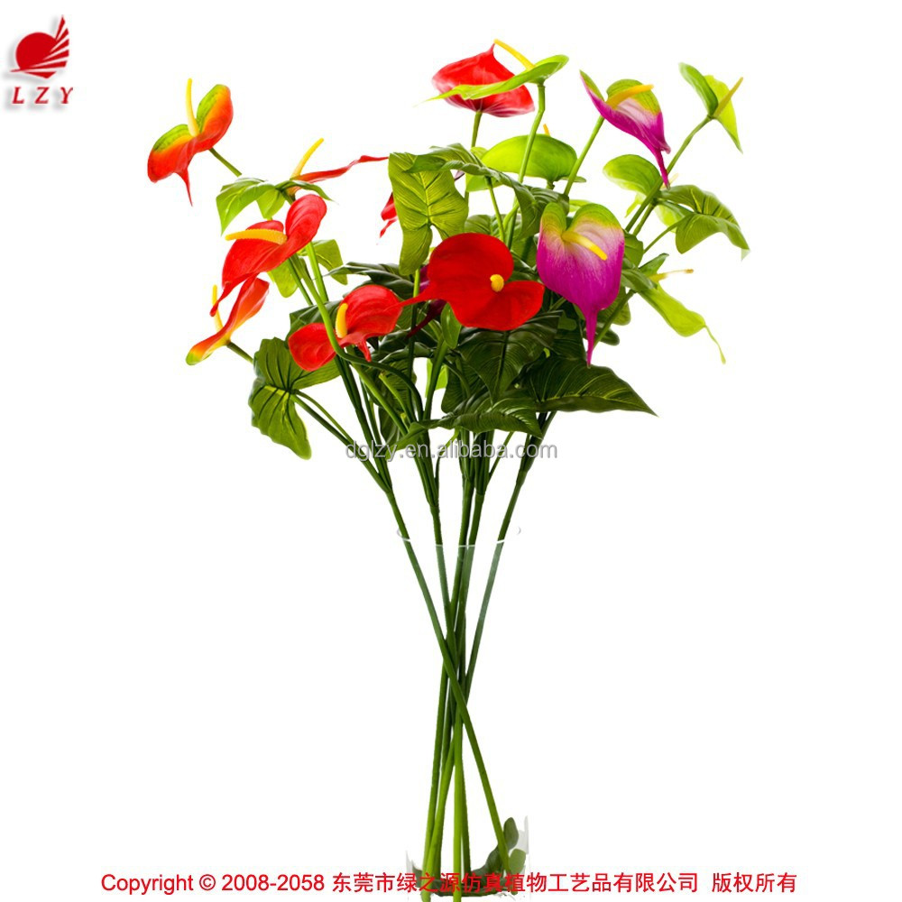 anthurium flowers and plants anthurium flowers and plants suppliers and manufacturers at alibabacom - Decorative Flowers