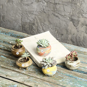 Wholesale small succulent ceramic plants flower dull polish pots for table