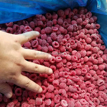 Fresh IQF Whole Frozen Raspberry with HACCP Certificate from Factory