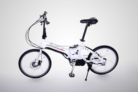 250W Ebike with Long Range and Heavy-loading Capacity - China Electric Bicycle