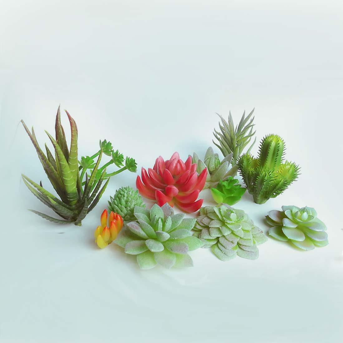 Artificial succulent, 12 different kinds of false succulent plant Fake Succulents DIY pot culture Simulation Cactus 12 Pcs by Lorigun
